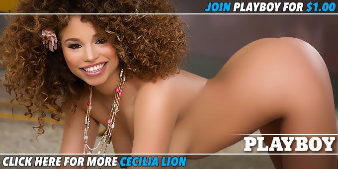 Cecilia Lion Vibrant Babe Banner