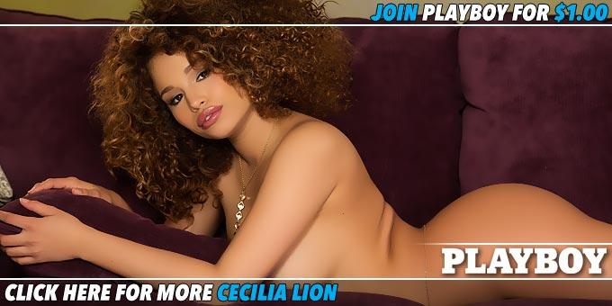 Shining Star Cecilia Lion Banner