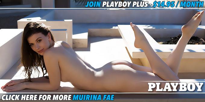 afternoon-sun-muirina-fae-banner