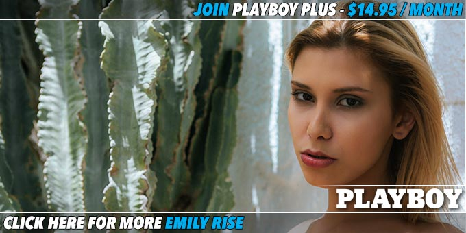 Blissful-Afternoon-With-Emily-Rise-Banner
